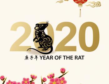 year of the rat lunar new year celebrations disneyland