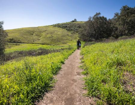 hiking in orange county california