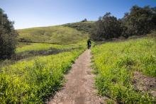 hiking in orange county california